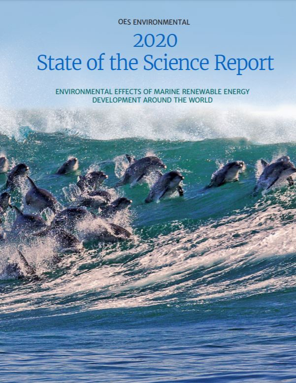 OES-Environmental 2020 State of the Science