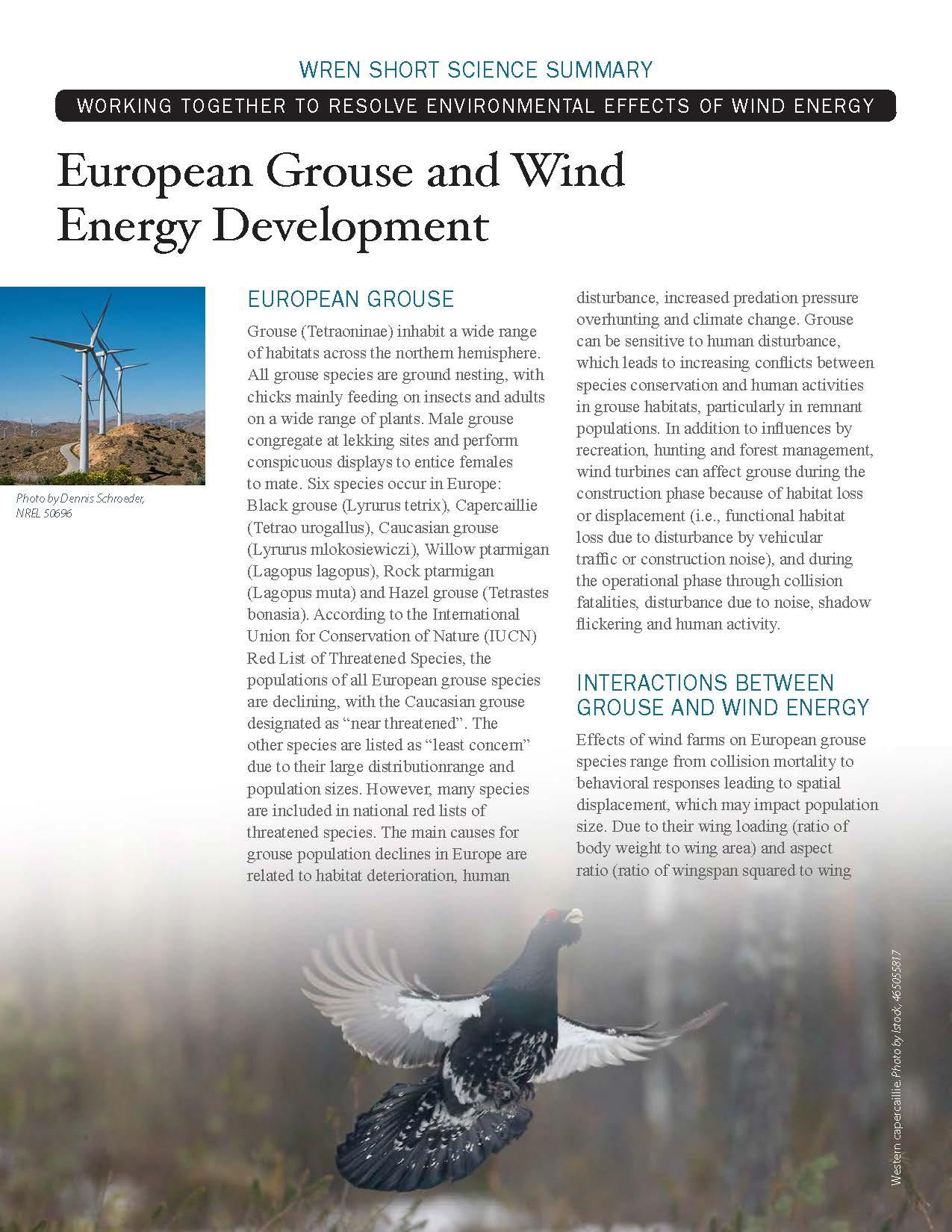 European Grouse Short Science Summary