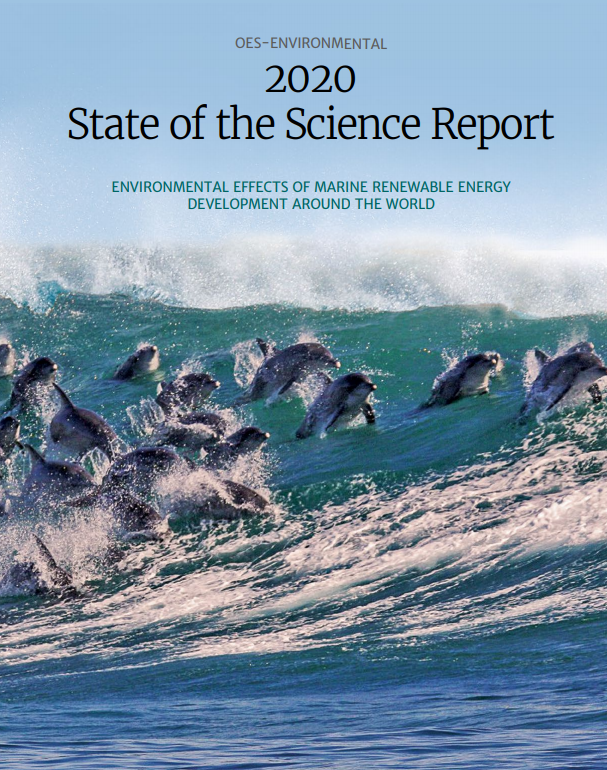 Front Cover, Full Report